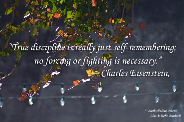 self disipline